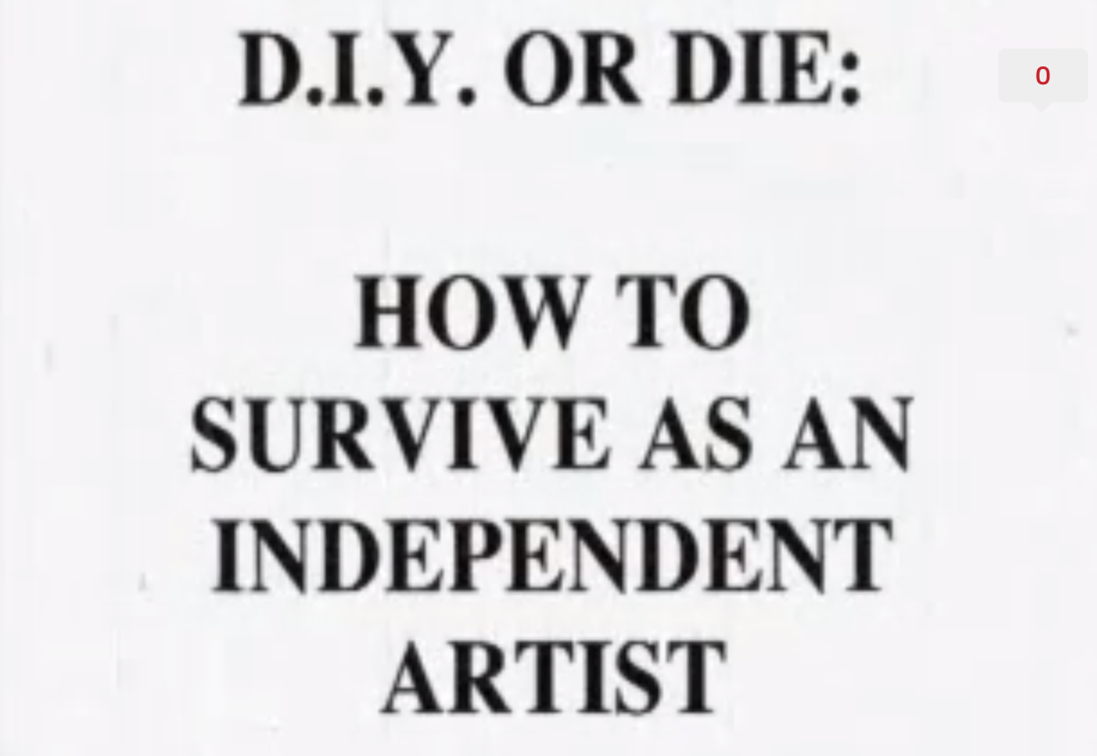 diy or die how to survive as an independent artist now on youtube